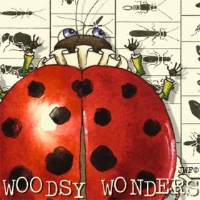 Woodsy Wonders
